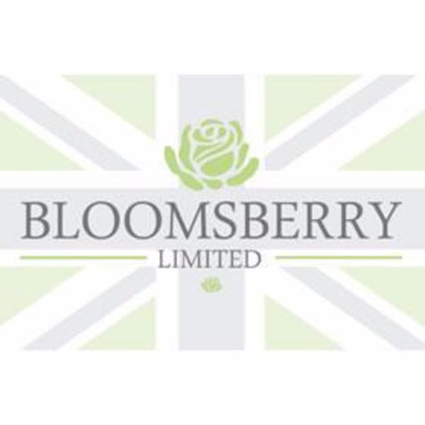 Bloomsberry_Logo_600x600