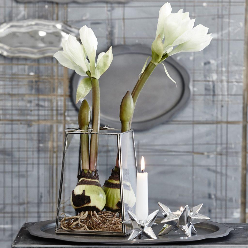 star-candlesticks-silver