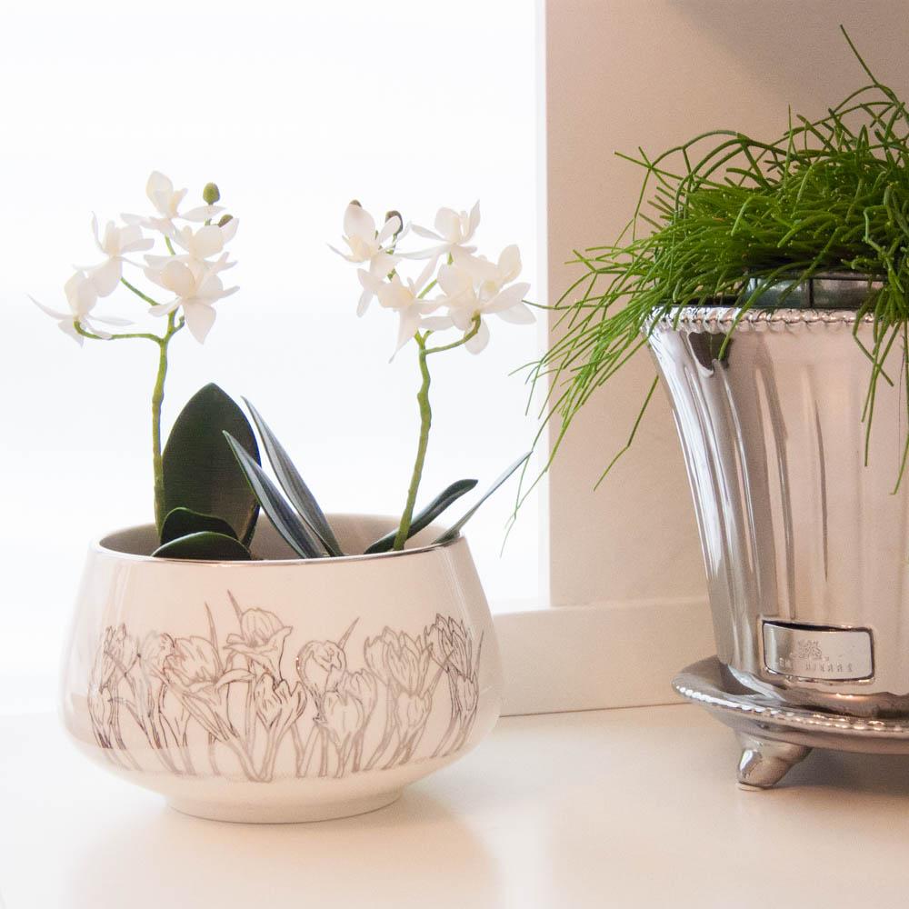 crocus-bowl