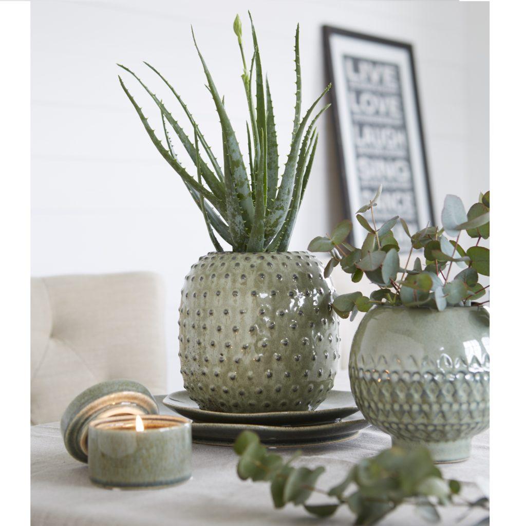 cactus-vase-matching-candle-pot-mood-original
