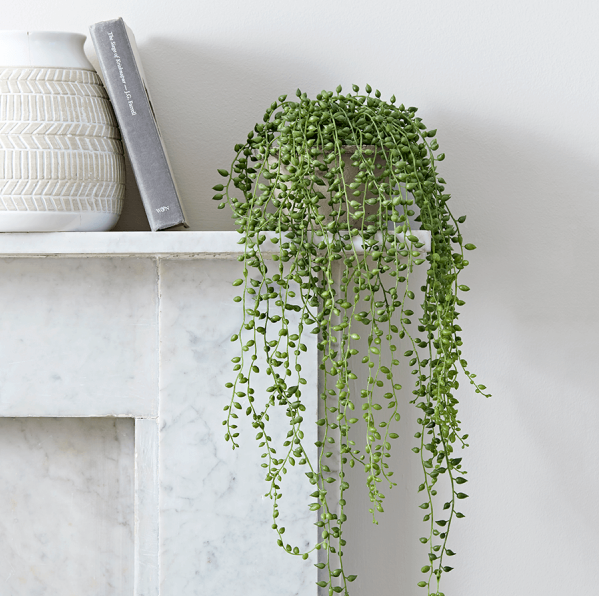 string-pearls-faux-plant-cement-planter